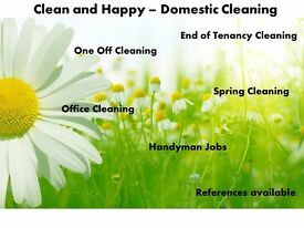 Clean and Happy - Domestic Cleaning