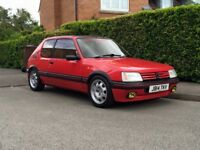 Peugeot 205 GTi6 Track Car (Breaking)