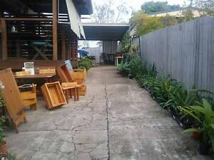 Plants and upcycled furniture for sale Stafford Brisbane North West Preview