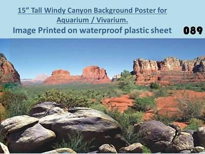 "15"" Tall Windy Canyon Background on Plastic Poster for Aquarium / Vivarium 089"