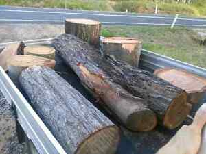 FREE REMOVAL OF FALLEN TREES, LOGS, TIMBER, ALL WOOD TYPES!!!! Logan Village Logan Area Preview