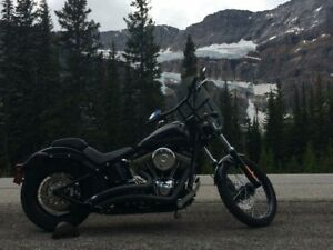2013 HD Softail Blackline
