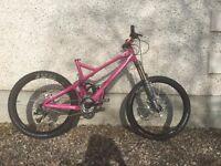 Giant Reign X0 Mountain Bike