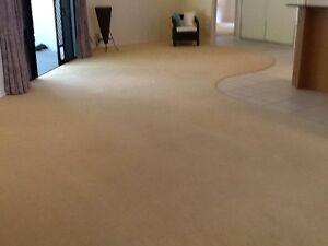 Free carpet cream colour great condition whole house Kewarra Beach Cairns City Preview