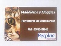 Madeleine's Moggies - Cat Sitting Service