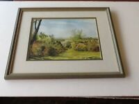 New Forest original Watercolour, signed and framed.