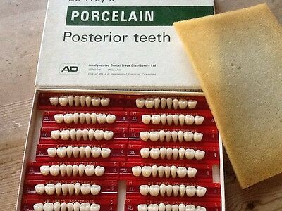 Real Vintage Boxed Posterior Teeth For Making Dentures
