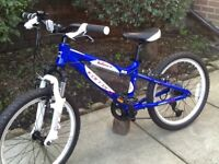 Carrera blast child's mountain bike mint only used a few times