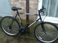 £40 lovely bike 26 wheel 22 frame 15 gearsall working in good condition can deliver for petrol