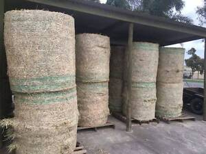 Hay Oaten or Wheaten Rounds Lucerne, Wheat, Oaten Bales Burton Salisbury Area Preview
