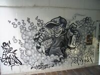 graffiti artist/Cartoonist - can cover all areas