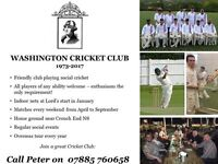 London Cricket Team Looking for New Players