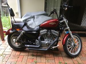 Harley Davidson Sportster Xl883 low no swap Moorooka Brisbane South West Preview