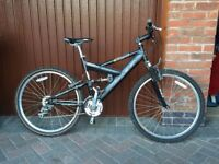 Raleigh Bandicoot Bike 20""