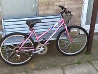 Lovely lady/s bike in great condition £35 can deliver for petrol