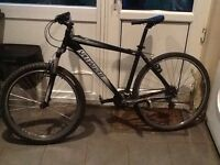 Mountain bike hardrock sport