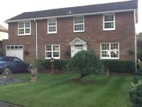 Annexe, Quiet, bright, spacious furnished-En-suite, bills Included &Parking
