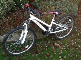 Childs Avigo 15 gears bike