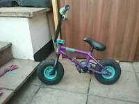 Mini rocker bike purple and green