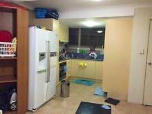 SHORT term single room and LONG term  double room avail July St Lucia Brisbane South West Preview