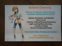Cleaning Business Helper