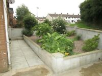 to let 3 bedroom house with garden pet welcome