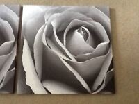 3 x canvas pictures