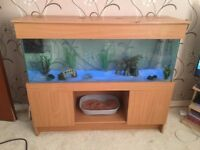 4ft(215 litres) fish tank ;will need men+van or large car! will consider offers