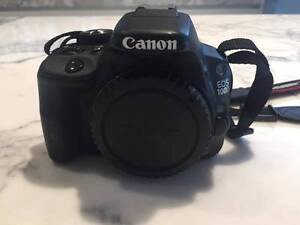 Canon EOS 100D Compact DSLR Camera (body only) Bondi Eastern Suburbs Preview