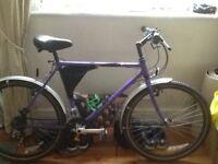 Raleigh mirage vintage mountainbike