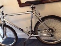 Claud Butler Gents Mountain Bike