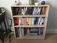 Useful Little Bookshelf Cheaper Because The Back Needs To Be Re Nailed