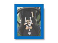 ☆ Maxi-Cosi baby CabrioFix Car Seat AND Easyfix Isofix Base ☆ PLUS F R E E toddler car seat incl. ☆