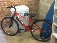 Junior red bike