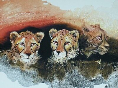 Perfect Oil Painting Handpainted On Canvas Cheetahs N1510