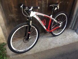 Mountain bike Specializes 29 inch