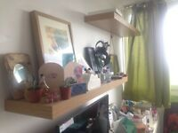 Sunny lovely single room available in Crystal Palace