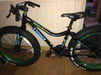 Fat bike stolen