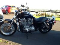 Harley Davidson 883xl low mileage