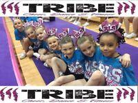 Tribe: Gymnastics & Cheerleading