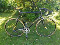 Classic Italian road racing bike GINO LIOTTO GRINTA Frame25'' HUGE BIKE!