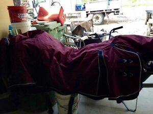 NEW Horse winter rugs and weather beaters 6'9 Toowoomba Toowoomba City Preview
