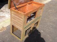 Guinea Pig Split Level House