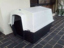 Large dog kennel Banyo Brisbane North East Preview
