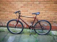 old bike Puma