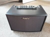 Roland AC-60 RW Acoustic Guitar Amp
