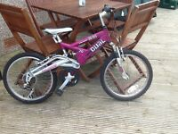 "Girls Raleigh 20"" bike"