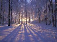 Yoga workshop - celebrating winter solstice