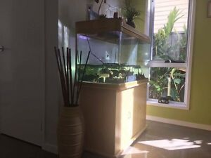 Fish or turtle tank with lid and stand Seven Hills Brisbane South East Preview