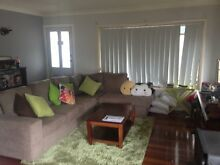 HOUSEMATE WANTED!! Armidale Armidale City Preview